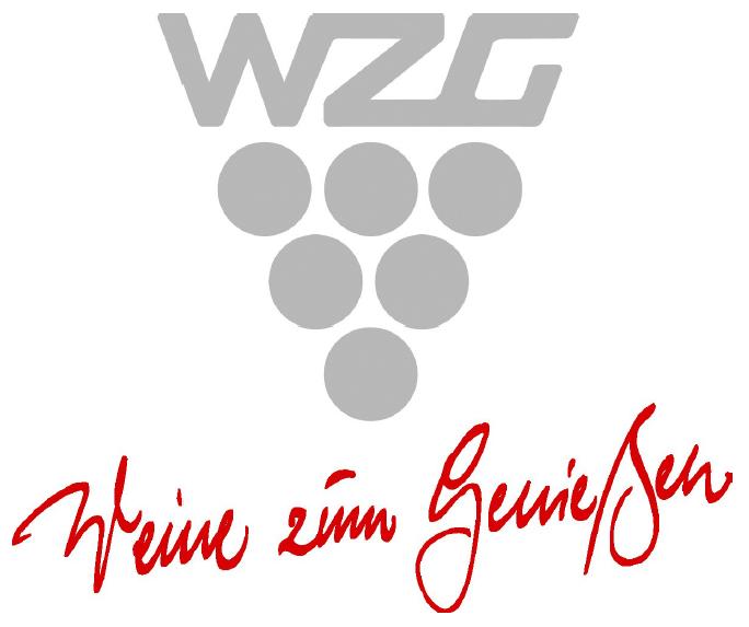 WZG Partner Banner